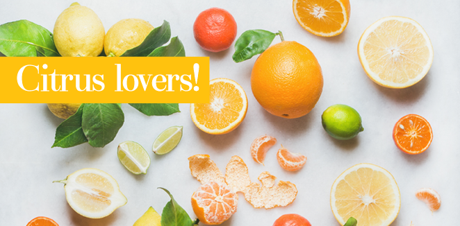 citrus-lovers-blog