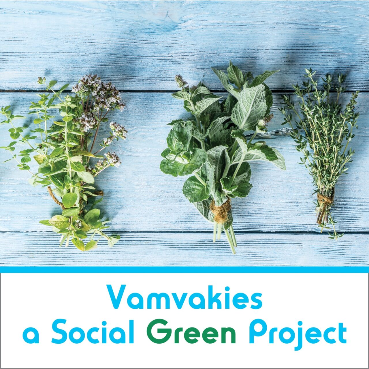 Vamvakies a Social Green Project